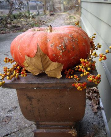 Pumpkinoutside