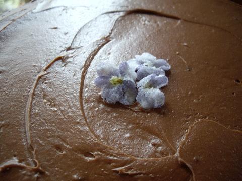 Cakeviolets