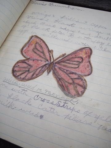 Claranotebook